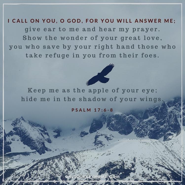 psalm 17