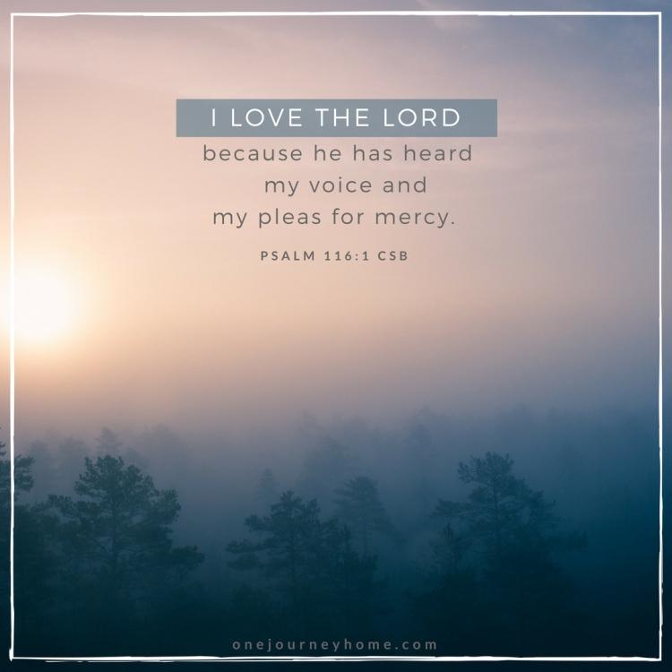 psalm 116